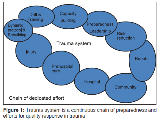 annals-medical-health-sciences-Trauma-system